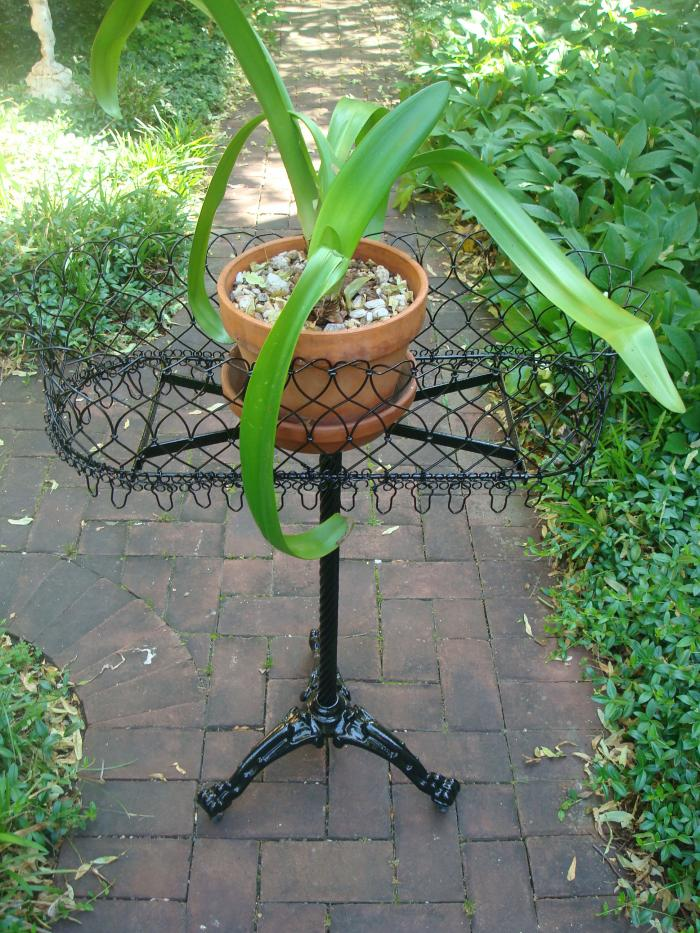 PLANT STAND, WIRE WORK ON CAST IRON PEDESTAL BASE